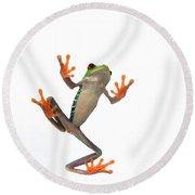 Frogs Belly Round Beach Towel