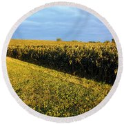 Frosted Soybeans Round Beach Towel