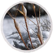 Frosted Trumpets Round Beach Towel