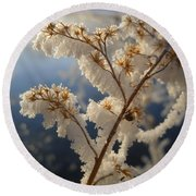 Frosty Dry Wood Aster Round Beach Towel