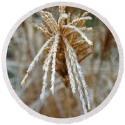 Frosty Fountain Grass Round Beach Towel