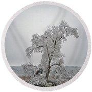 Frozen Tree Round Beach Towel