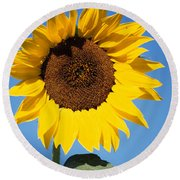 Full Sunflower Round Beach Towel