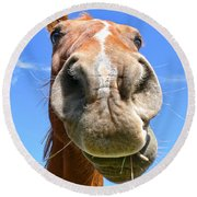 Funny Brown Horse Face Round Beach Towel by Jennie Marie Schell
