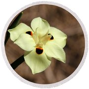 Funny Face Flower Round Beach Towel