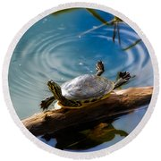 Funny Turtle Catching Some Rays Round Beach Towel