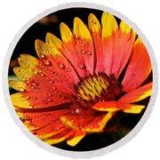 Gaillardia Flower Round Beach Towel