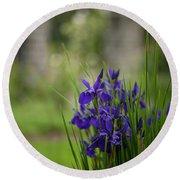 Garden Blue Irises Round Beach Towel