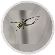 Garden Spider Round Beach Towel