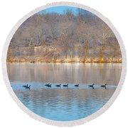 Geese In The Schuylkill River Round Beach Towel