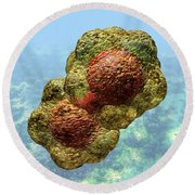 Geminivirus Particle Round Beach Towel