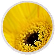Gerbera Flower Round Beach Towel