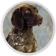 German Pointer Portrait Of A Dog Round Beach Towel