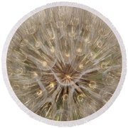 Giant Dandelion Round Beach Towel
