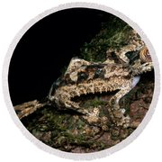 Giant Leaf Tail Gecko Round Beach Towel
