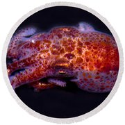 Giant Pacific Octopus Round Beach Towel
