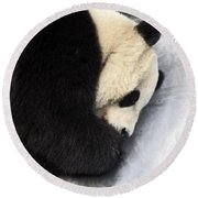 Giant Panda Portrait Round Beach Towel