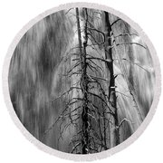 Gibbons Falls In Yellowstone National Park Round Beach Towel
