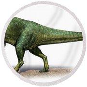 Giganotosaurus Carolinii, A Prehistoric Round Beach Towel