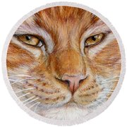 Ginger Cat  Round Beach Towel