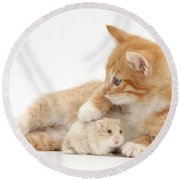 Ginger Kitten And Russian Hamster Round Beach Towel