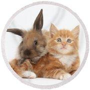 Ginger Kitten Young Lionhead-lop Rabbit Round Beach Towel