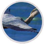 Gliding Great Blue Heron Round Beach Towel