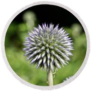 Globe Thistle Round Beach Towel