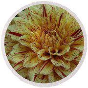 Glorious Gloriosa  Round Beach Towel