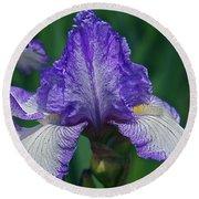 Glorious Iris Round Beach Towel