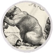 Glyptodon And Megatherium, Extinct Fauna Round Beach Towel