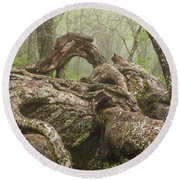 Gnarly Old Tree In Fog Along The Blue Ridge Parkway Round Beach Towel by Bill Swindaman