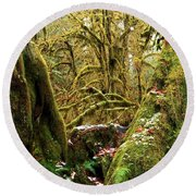 Gnomes In The Rainforest Round Beach Towel