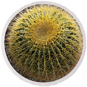 Gold Barrel Cactus   No 1 Round Beach Towel
