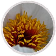 Gold Stamen Round Beach Towel