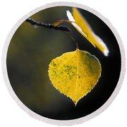 Golden Aspen Leaf Round Beach Towel