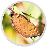 Golden Butterfly Round Beach Towel