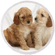 Golden Cockerpoo Puppies Round Beach Towel