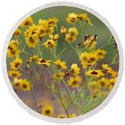 Golden Coreopsis Tickseed Wildflowers Round Beach Towel