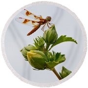 Golden Dragon Round Beach Towel