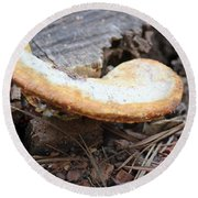 Golden Edged Mushroom Round Beach Towel