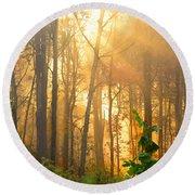 Golden Fog Thru The Trees Round Beach Towel