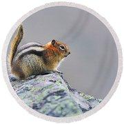 Golden-mantled Ground-squirrel Round Beach Towel