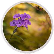 Golden Violets Round Beach Towel