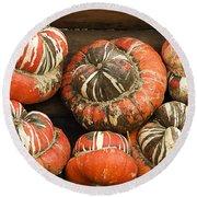 Gorgeous Gourds Round Beach Towel