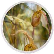 Graceful Orchids Round Beach Towel