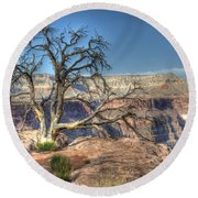 Grand Canyon Tree At Toroweap Round Beach Towel