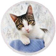 Grand Kitty Cuteness 2 Round Beach Towel