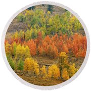 Grand Teton Fall Color Round Beach Towel