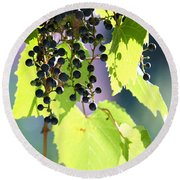 Grapes And Leaves Round Beach Towel
